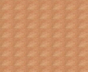 skin-map2kl